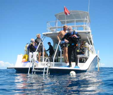 Guided Boat Dives