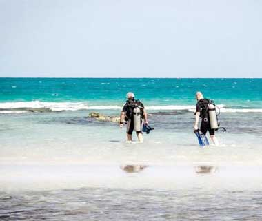 Enjoy Guided Shore Dive